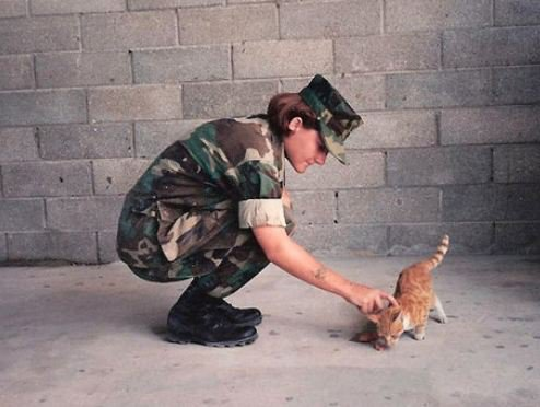 We Love Soldiers and Sailors Who Love Cats
