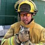 Firefighters Make Classic Kitten Up Tree Rescue