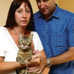 Couple Pays Nearly £1,000 to Bring Cat Home From Greece