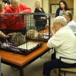 Bridging the Gap Between the Elderly/Disabled and Shelter Animals