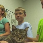 Runaway Cat Found Living At Home Depot; Reunited With Family A Year Later