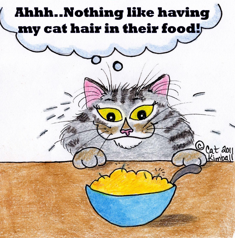 Risultati immagini per sunday cat funny