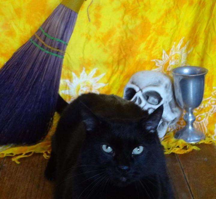 Reader Photos: Happy Halloween