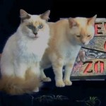 Cats Haunted Halloween: Furball Fables