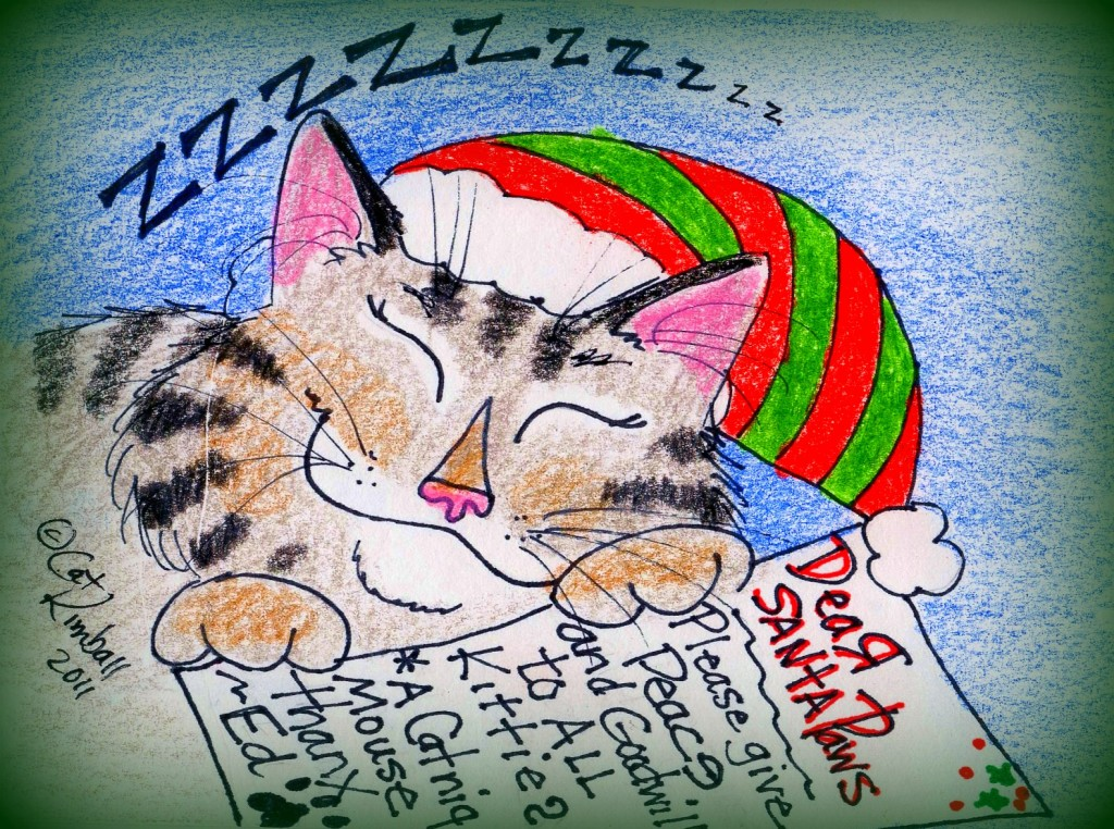 Sunday Funny: A Cat's Wish For Christmas