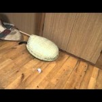More Fun With The Basket Sieve: Toy Mouse Hunt