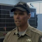 Shelter Director Stands Firm and Fires Employee for Mistreating Cat