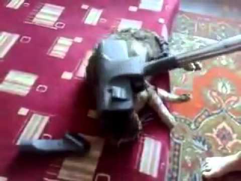 Vacuuming the Cat