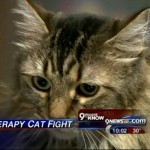 Co Woman Wins Battle to Have Her Cat Recognized as a Service Animal