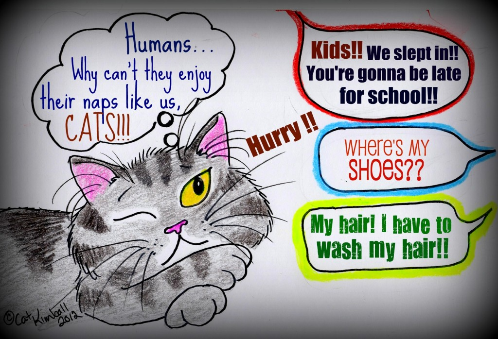 Sunday Funny: Why Can't Humans Be More Like Cats?