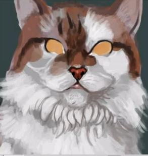 Cat Painting (sped up)