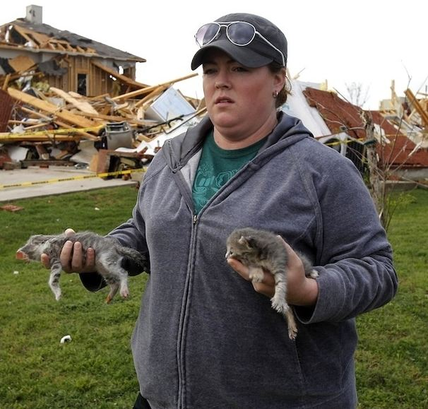 Kittens Rescued From House Demolished by Tornado