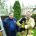 Spokane Firefighters Rescue Whiskers the Cat