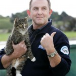 Missing Cat Turns Up 6 Months and 280 Miles Later