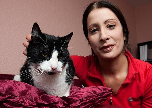 Cat Recovers After Fall Onto Victorian Iron Garden Fence Spike
