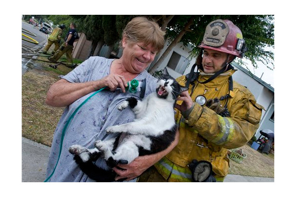 Firefighters Rescue 2 Cats and a Dog From House Fire