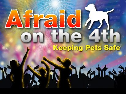 Infographic: July 4th Fireworks – Keeping Your Pets Safe