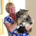 Lady and Her Tramp Reunited: Maine Coon Cat Missing 18 Months Is Back Home