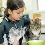 18 Months After Queensland Floods, Missing Cat Maisie Comes Home