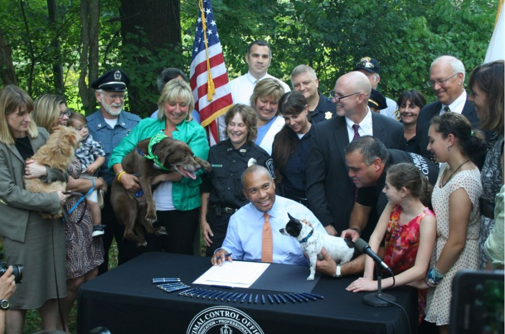 Massachusetts Enacts Landmark Animal Welfare Law With Protections For the State's Pets