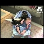 Baby and Cat Cuddle