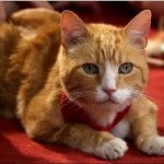 Bogey's Story: Formerly Abused Cat Teaches Children Kindness and Duty Toward Animals