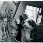 Babette Lewyt, Animal Rescue and No-Kill Pioneer, Remembered