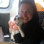 Transport Brings New Jersey Cats to Maine, as Hurricane Sandy Displacement Continues