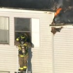 Firefighter Rescues Cat From Third Story Window of Burning Building