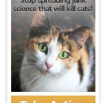 Petition Seeks Support in Telling the Smithsonian to Stop Using Junk Science to Demonize Cats