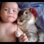 Cat Loves Baby