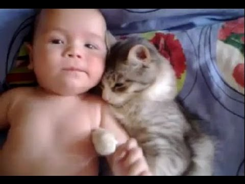 Cat Loves Baby
