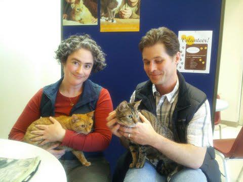 Cats Rescued From Sealed Tub in Dumpster Are Adopted Together