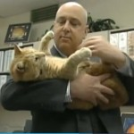 Cat Welcomed at Maine High School, Honored with Art Exhibit
