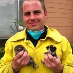 Firefighters Rescue Tiny Kittens Then Save Them From Euthanasia
