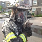 Firefighters Rescue Cats and Dog From Boulder Condo Fire