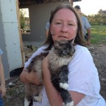 Reunited! Gypsy is found in her home 3 weeks after tornado