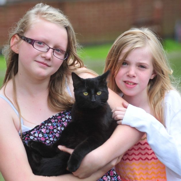 Girls Rescue and Rehome Kitten Locked in Toilet Shed