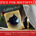 Justice for Mistoffelees
