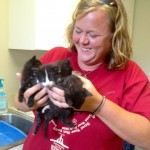 Boys Report Abuse, Kittens are Saved