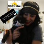 Justin Burned Kitten is Adopted (and gets a new Facebook page)