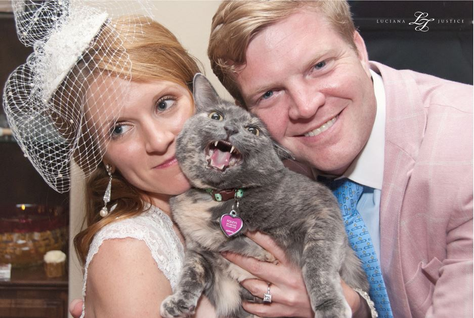 Cat steals the show in couples wedding photos life with cats csdksksk junglespirit Gallery
