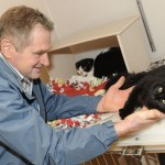 Man is Reunited with Cats Missing for 19 Days Following Car Crash