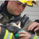 Firefighters Revive Cat at Scene of Apartment Fire
