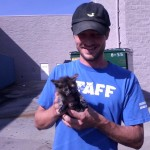 Good Samaritan and Shelter Staff Rescue Kitten Trapped for Days