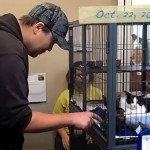 Boxcar Kittens Find a Home