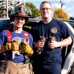 Firefighters Rescue and Adopt Kittens Found During Training Exercise