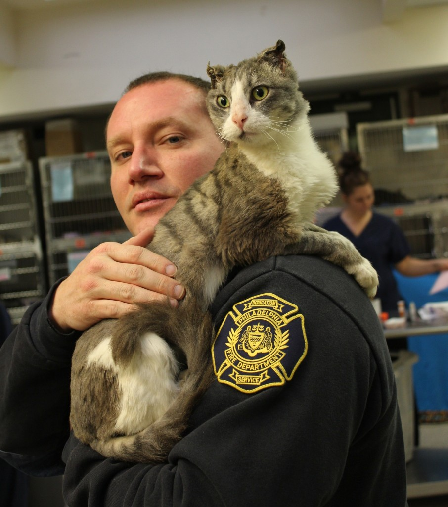 Cat Set on Fire to be Adopted by Philadelphia Firefighter