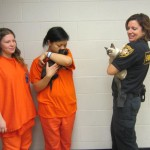 Kittens Get Second Chance with Inmates in Jail Foster Program