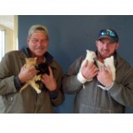 Construction Workers Rescue Mama Cat and Her Kittens